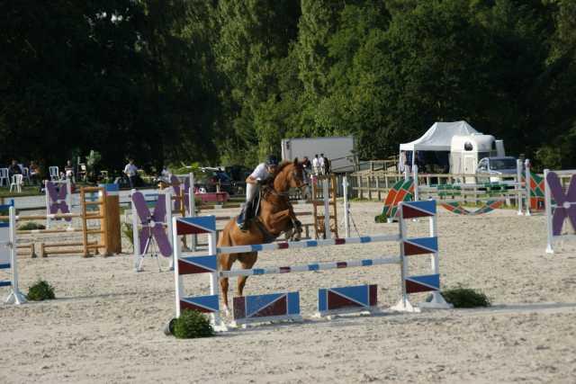Concours du 25 et 26 juillet 2015 Organisé par Julien Murier
