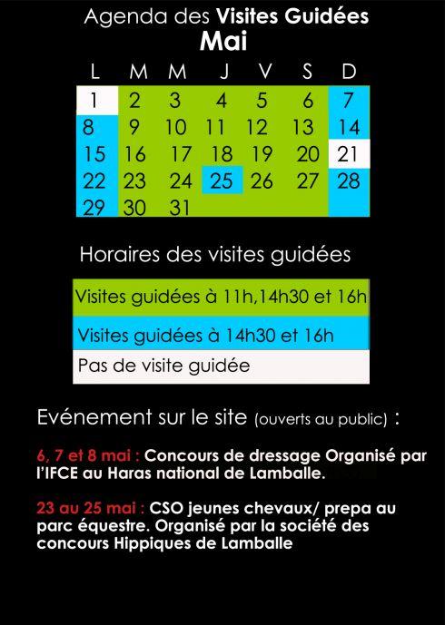 Agenda des visites guidées du mois de Mai